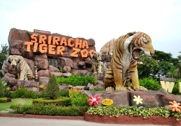 สวนเสือศรีราชา สวนสัตว์เปิดที่ทุกคนต้องรู้จักกันดี