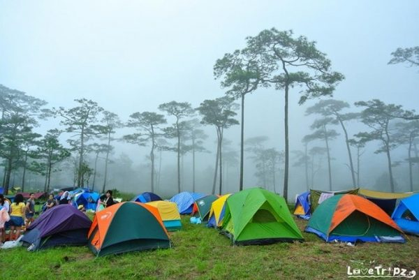 ลิสต์ไว้เลย! 4 อุทยานน่าเที่ยวหน้าฝน รับกลิ่นไอดิน สูดกลิ่นธรรมชาติแบบเต็มปอด