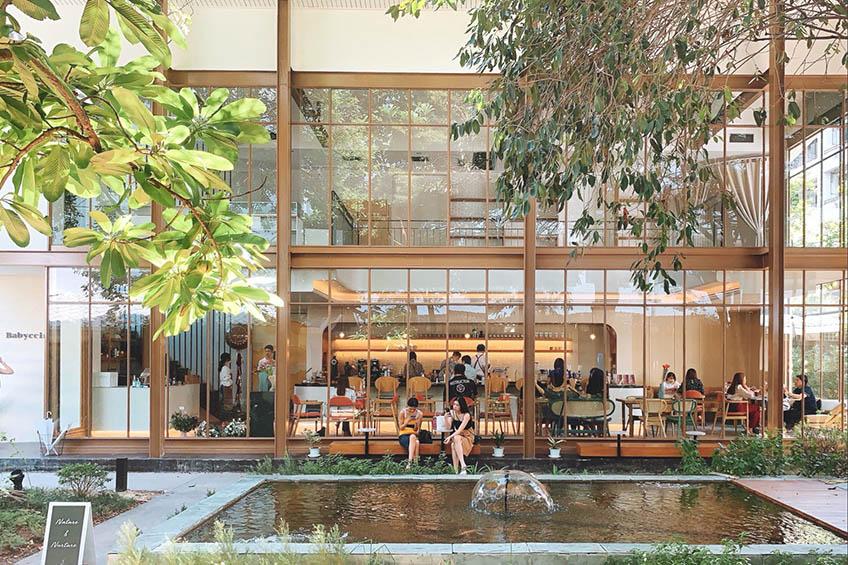 คาเฟ่ในสวน กรุงเทพ  Babyccino